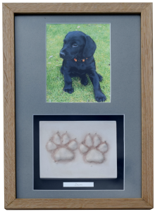 Clay Paw Prints with photo - framed