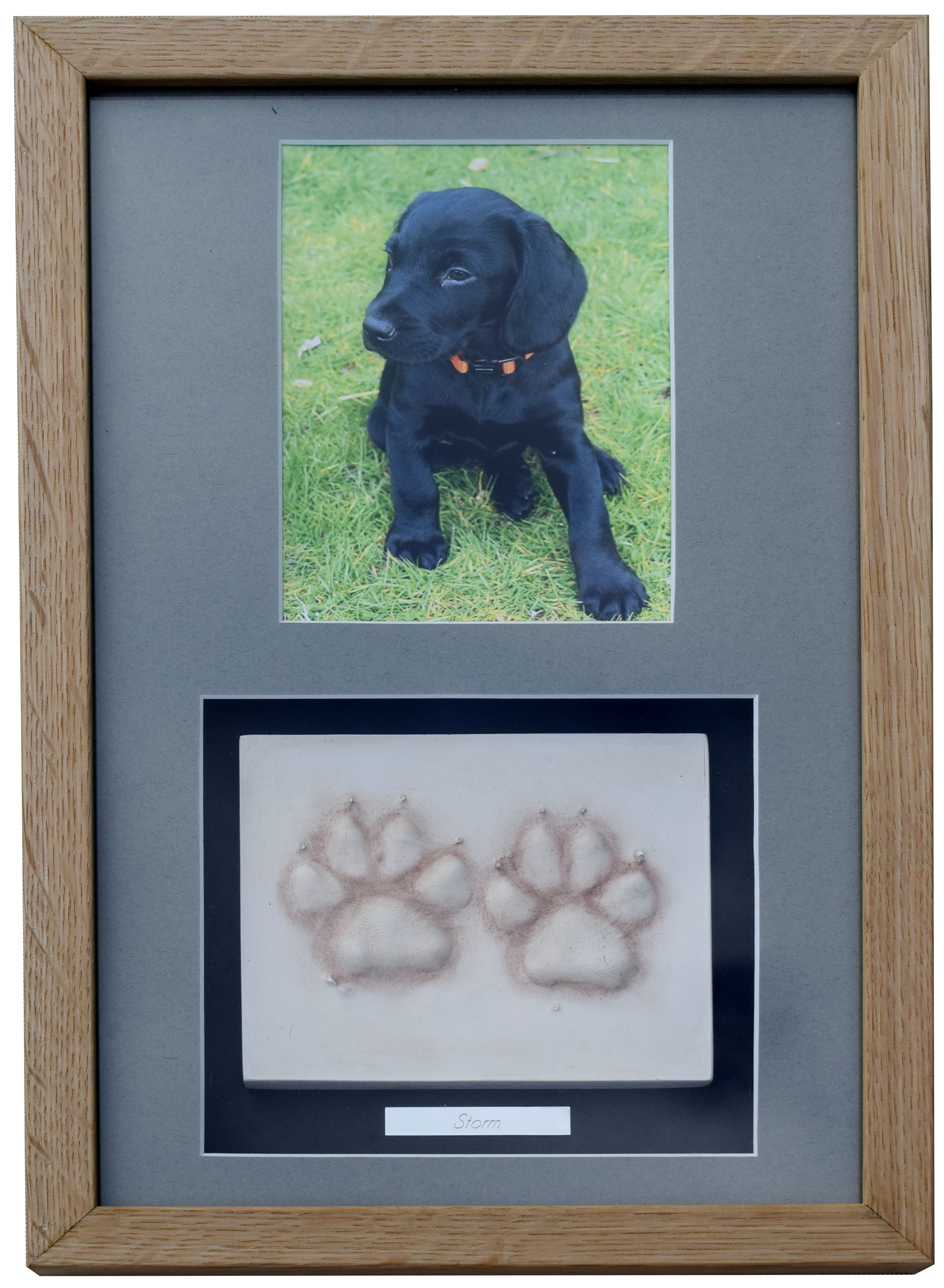 5b0f9dc1db8c ... animal memorial, dog prints in clay. Clay Paw Prints with photo - framed
