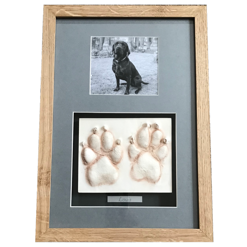 Framed dog paw prints impressions in clay in wooden frame with photo of a black dog