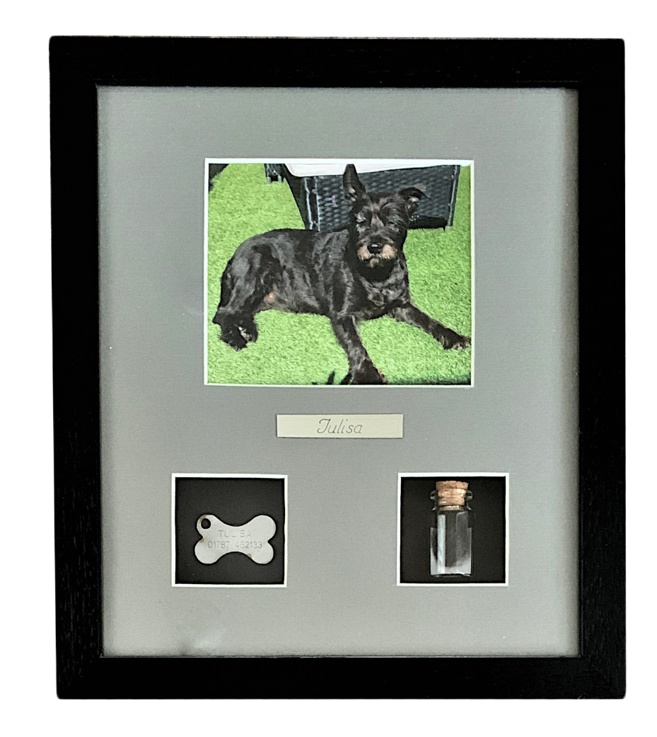 dog photo with framed tag and hair