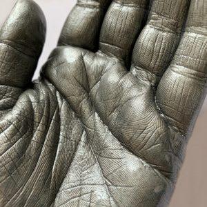 close up of hand life cast
