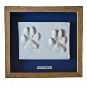 clay paw print impressions framed - clay