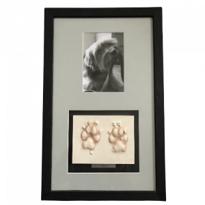 paw print framed with photo - clay
