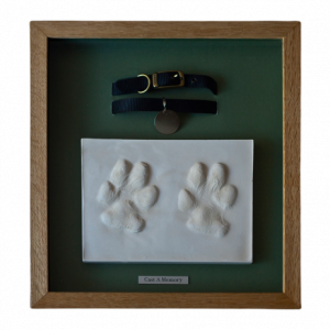 paw print with collar framed