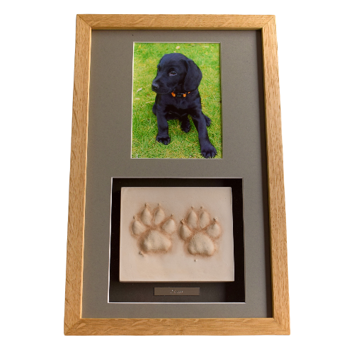 framed clay paw prints with photo