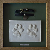 Dog Paw Prints and Collar - Framed