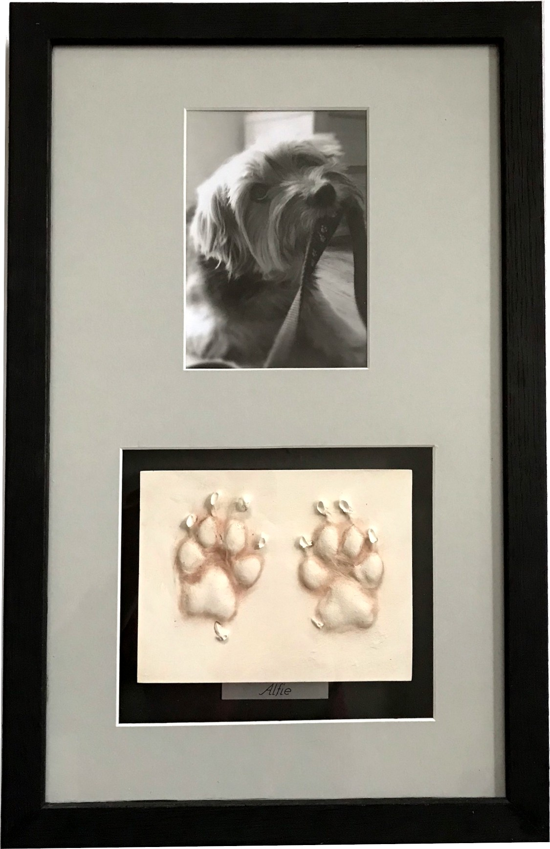 Paw Prints in Clay with photo